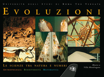 Copertina Evoluzioni