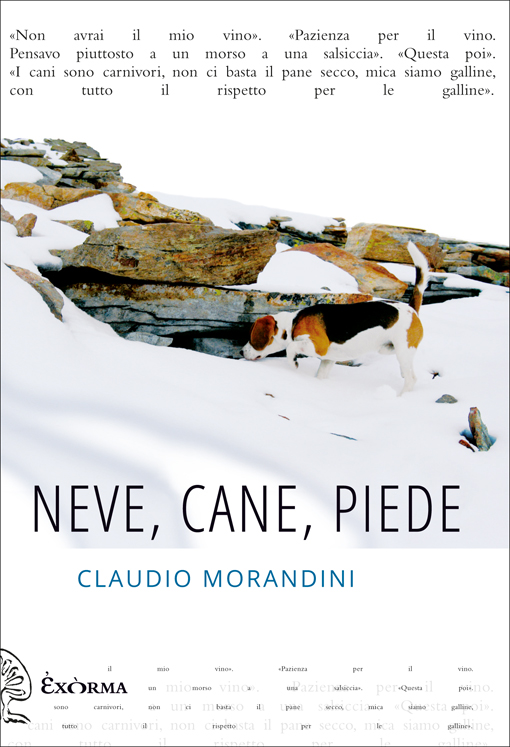 Neve, cane, piede - di Claudio Morandini